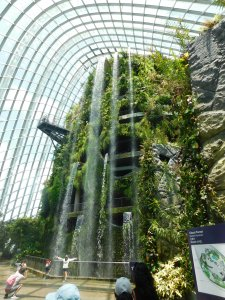 Cloud Forest in the Gardens by the Bay